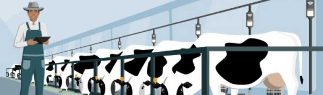 Milking Parlour Pit Mats